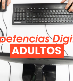 Competencias digitales: Adultos